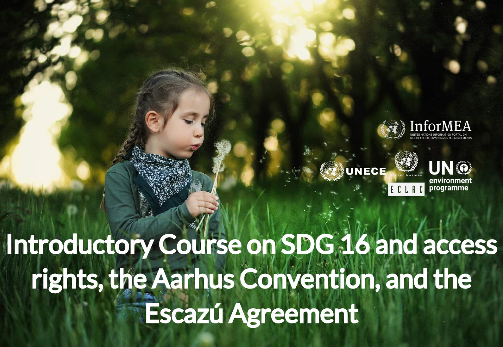 SDG 16 (Access Rights), the Aarhus Convention, and the Escazu Agreement